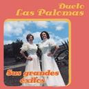 Sus Grandes Exitos/Dueto Las Palomas