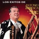 Antonio Bribiesca y Su Guitarra Mexicana/Antonio Bribiesca