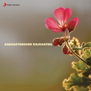 Aakasathekoru Kilivaathil (Original Motion Picture Soundtrack)/Ouseppachan