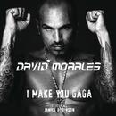 I Make You Gaga (Zenith Nadir and Siensdeluxe Remix)/David Morales