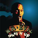 Shake It Up/Mr. Evil
