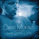 How Would U Feel feat.Lea-Lorién/David Morales