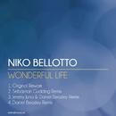 Wonderful Life EP/Niko Bellotto