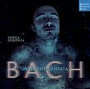 Bach: The Silent Cantata/Musica Sequenza