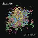 Lost in The Flow/Beatshake