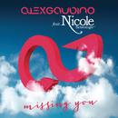 Missing You (Remixes) feat.Nicole Scherzinger/Alex Gaudino