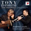 TAM TAM BRASS/Tony Esposito