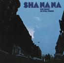 The Night Is Still Young/Sha Na Na