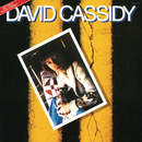 Gettin' It in the Street/David Cassidy