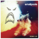 Dreaming Remix EP/Smallpools