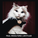 Untitled (Call Out Your Name) (Radio Edit)/Paul Woolford