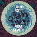 Camino Acido/Angel Stanich