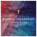 Raised to Life/Elevation Worship
