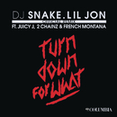 Turn Down for What (Official Remix) feat.Juicy J,2 Chainz,French Montana/DJ Snake