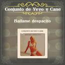 Báilame Despacito/Conjunto de Yeyo y Cane