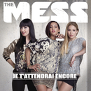 Je t'attendrai encore/The Mess
