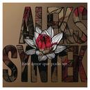 Este Amor Que Pudo Ser/Aleks Syntek