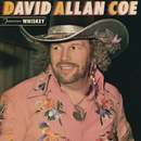 Tennessee Whiskey/David Allan Coe