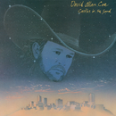 Castles in the Sand/David Allan Coe