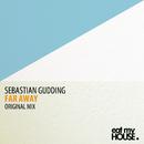 Far Away (Original Mix)/Sebastian Gudding