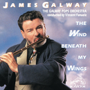 The Wind Beneath My Wings/James Galway