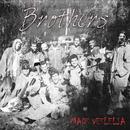 Brothers/Mads Veslelia