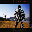Delicate Sound of Thunder (Live)/Pink Floyd