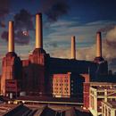 Animals/Pink Floyd