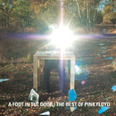 A Foot in the Door: The Best of Pink Floyd/Pink Floyd