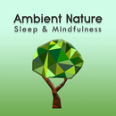 Ambient Nature (Sleep & Mindfulness)/Sleepy Times