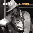 The Essential Taj Mahal/Taj Mahal
