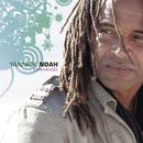 Charango/Yannick Noah