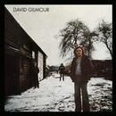 David Gilmour/David Gilmour