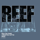 The Collections/Reef