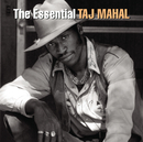 The Essential/Taj Mahal