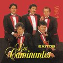 21 Exitos Vol. I/Los Caminantes