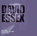 The Collections/David Essex