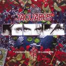 Cronicas De Un Laberinto/Jaguares