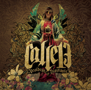 Residente o Visitante/Calle 13