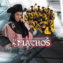 El Próximo Tonto/Banda Machos