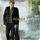 I'm Doin' Alright/Adam Harvey