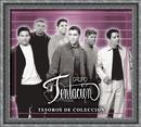 Tesoros De Coleccion/Grupo Tentacion