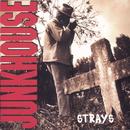 Strays/Junkhouse