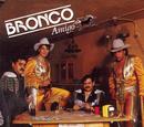 Bronco Amigo/Bronco