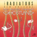 Zig-Zaggin' Through Ghostland/The Radiators