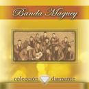 Coleccion Diamante/Banda Maguey
