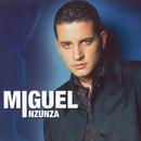 Juguete De Madera/Miguel Inzunza