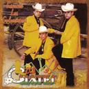Escuché Las Golondrinas/Los Cuates de Sinaloa