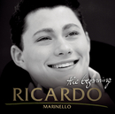 The Beginning/Ricardo Marinello