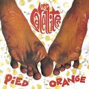 Pied Orange/Les Satellites